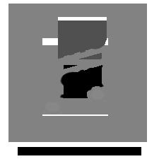 Musik, Konzerte, Eventsbei einkaufen-wiesbaden.de